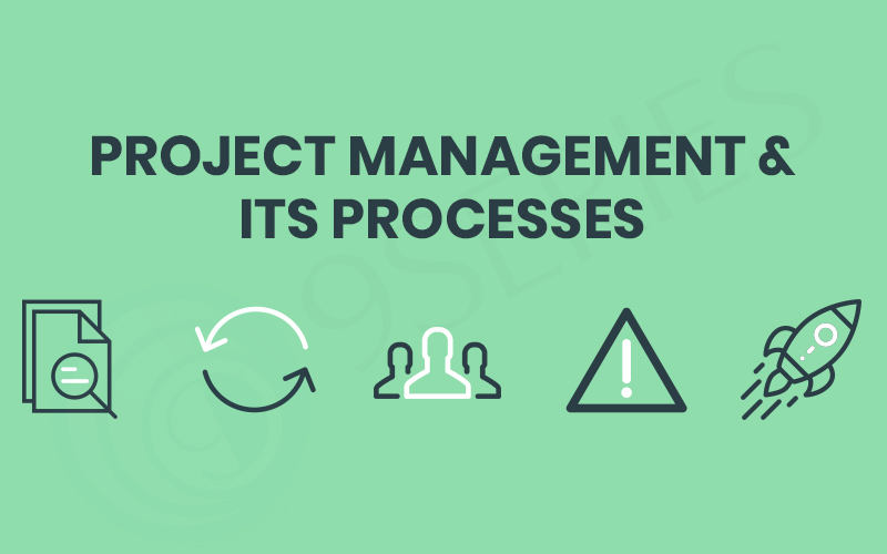 Project-Management-&-Its-Processes 9series solutions